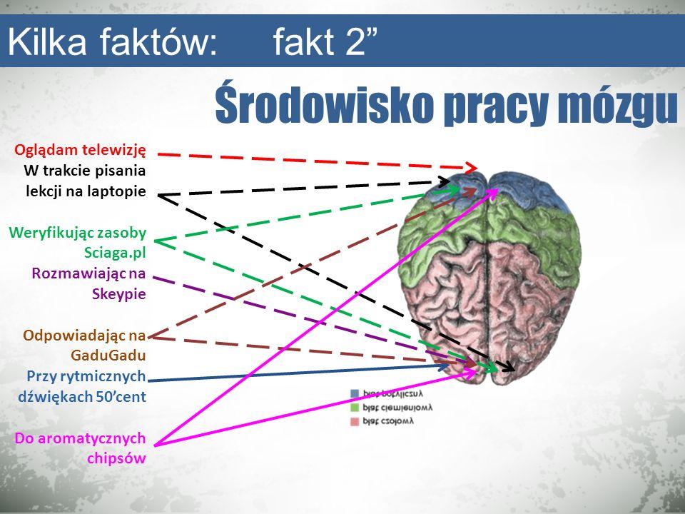 Środowisko pracy mózgu Kilka faktów: fakt 2 Oglądam telewizję W trakcie pisania lekcji na laptopie Weryfikując zasoby Sciaga.pl Rozmawiając na Skeypie