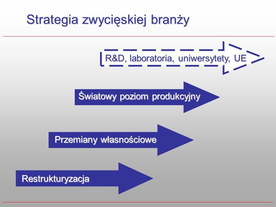 Strategia zwycięskiej branży Restrukturyzacja Przemiany własnościowe Światowy poziom produkcyjny R&D, laboratoria, uniwersytety, UE