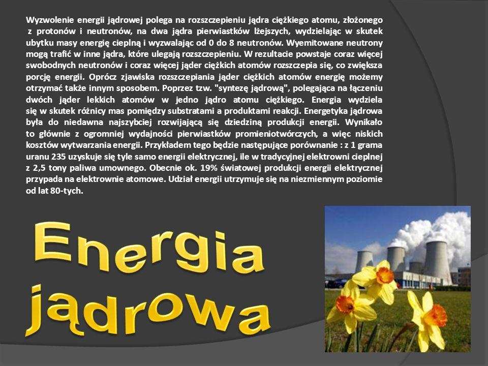 Wyzwolenie energii jądrowej polega na rozszczepieniu jądra ciężkiego atomu, złożonego z protonów i neutronów, na dwa jądra pierwiastków lżejszych, wydzielając w skutek ubytku masy energię cieplną i wyzwalając od 0 do 8 neutronów.