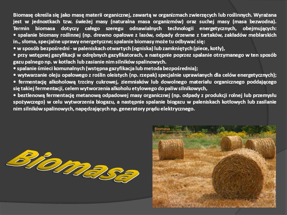 Biomasę określa się jako masę materii organicznej, zawartą w organizmach zwierzęcych lub roślinnych.