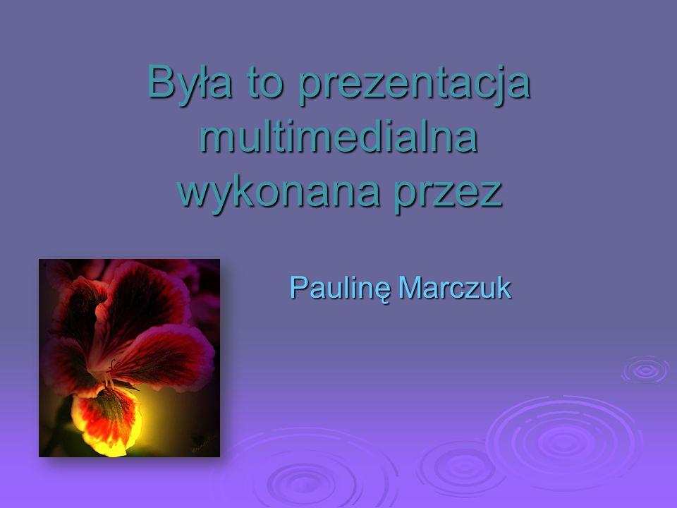 Podsumowanie: Rajmund Rembieliński był: prezesem Komisji Województwa Mazowieckiego działaczem politycznym i gospodarczym prawnikiem członkiem Towarzys