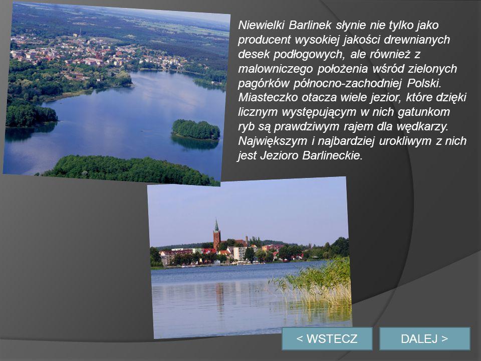 Niewielki Barlinek słynie nie tylko jako producent wysokiej jakości drewnianych desek podłogowych, ale również z malowniczego położenia wśród zielonych pagórków północno-zachodniej Polski.