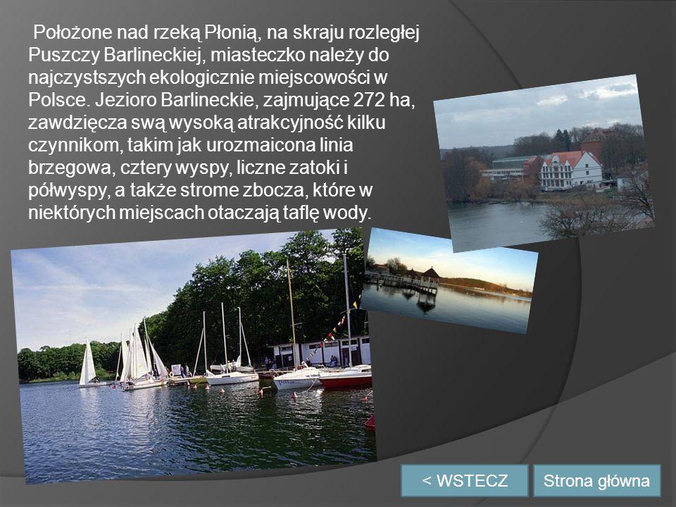< WSTECZ Położone nad rzeką Płonią, na skraju rozległej Puszczy Barlineckiej, miasteczko należy do najczystszych ekologicznie miejscowości w Polsce.