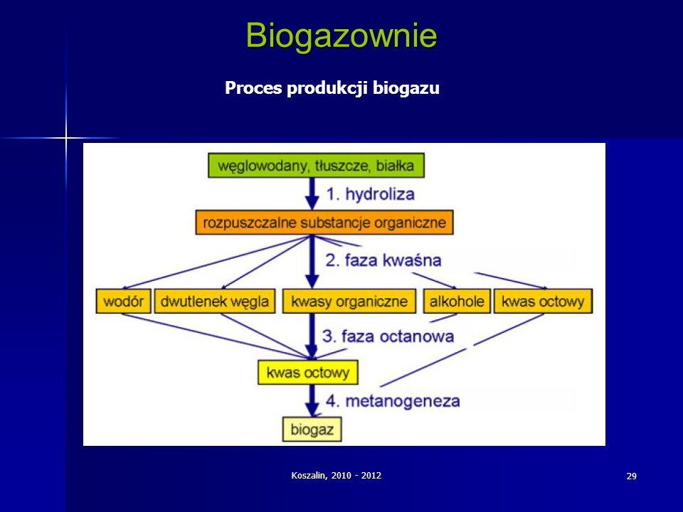 Koszalin, 2010 - 2012 29 Biogazownie Proces produkcji biogazu
