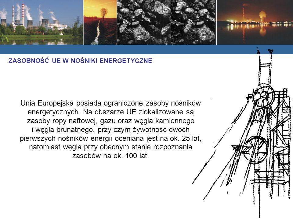 Unia Europejska posiada ograniczone zasoby nośników energetycznych.