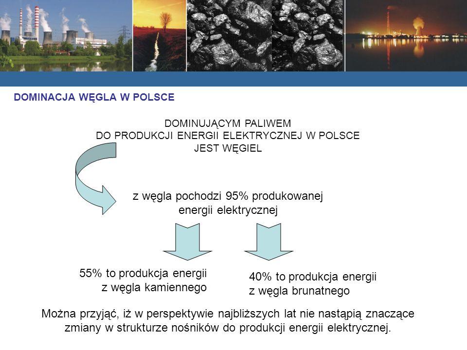 DOMINUJĄCYM PALIWEM DO PRODUKCJI ENERGII ELEKTRYCZNEJ W POLSCE JEST WĘGIEL z węgla pochodzi 95% produkowanej energii elektrycznej 55% to produkcja energii z węgla kamiennego 40% to produkcja energii z węgla brunatnego Można przyjąć, iż w perspektywie najbliższych lat nie nastąpią znaczące zmiany w strukturze nośników do produkcji energii elektrycznej.