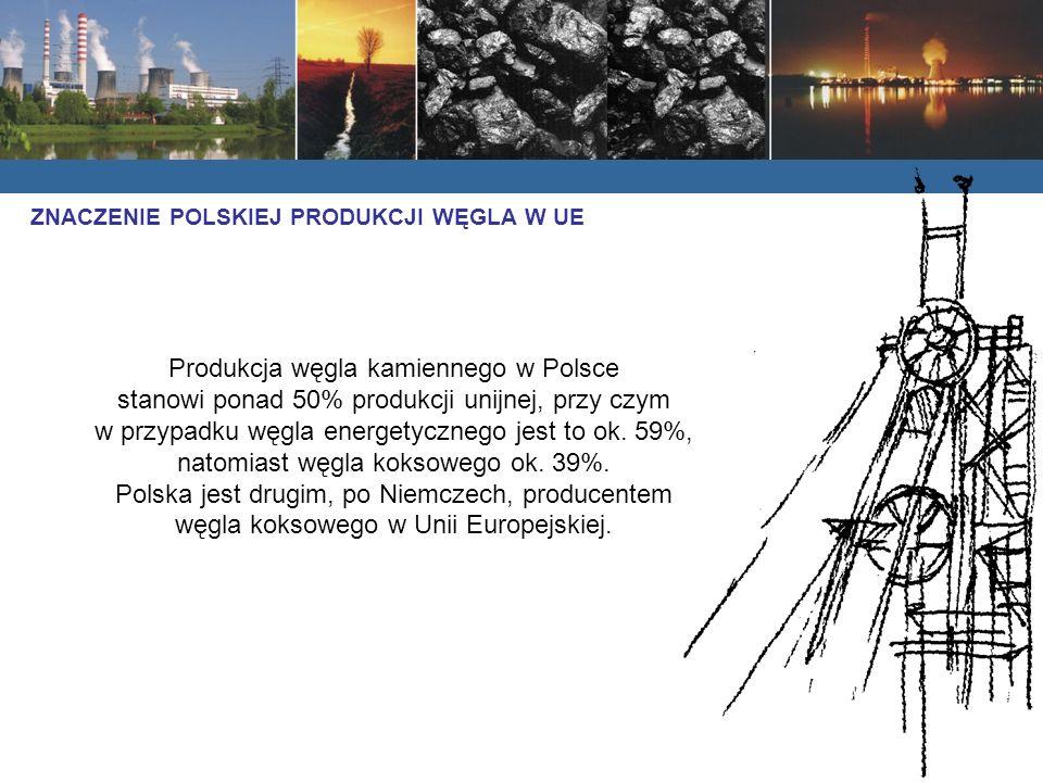 Produkcja węgla kamiennego w Polsce stanowi ponad 50% produkcji unijnej, przy czym w przypadku węgla energetycznego jest to ok. 59%, natomiast węgla k