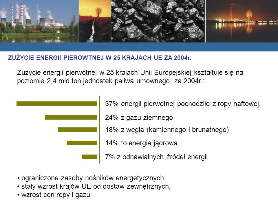 Zużycie energii pierwotnej w 25 krajach Unii Europejskiej kształtuje się na poziomie 2,4 mld ton jednostek paliwa umownego, za 2004r.: 37% energii pierwotnej pochodziło z ropy naftowej, 24% z gazu ziemnego 18% z węgla (kamiennego i brunatnego) 14% to energia jądrowa 7% z odnawialnych źródeł energii ograniczone zasoby nośników energetycznych, stały wzrost krajów UE od dostaw zewnętrznych, wzrost cen ropy i gazu.