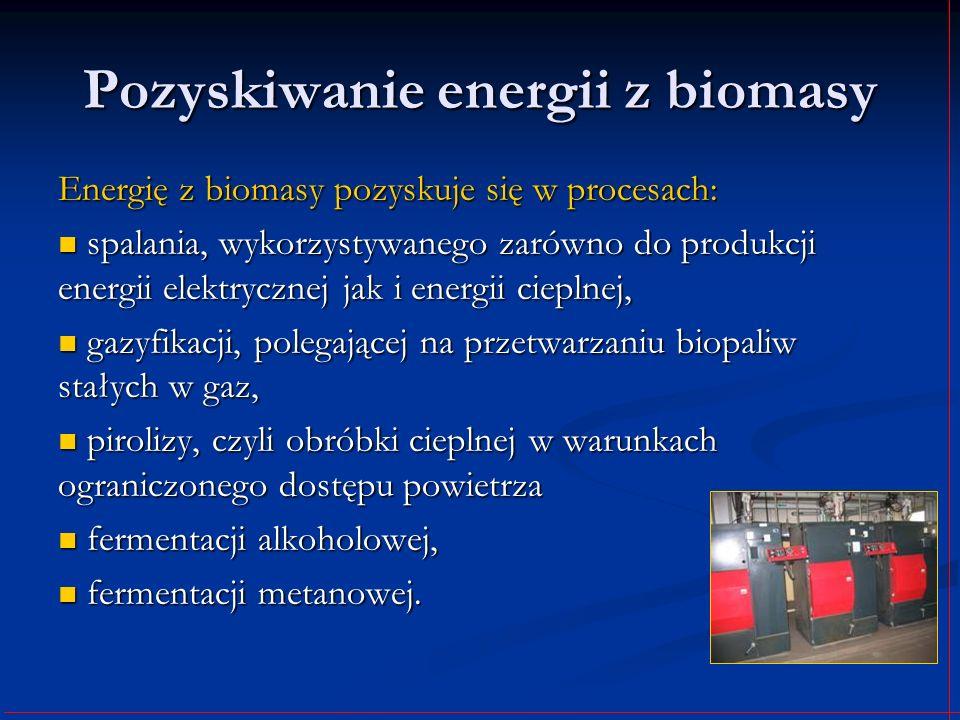 Pozyskiwanie energii z biomasy Energię z biomasy pozyskuje się w procesach: spalania, wykorzystywanego zarówno do produkcji energii elektrycznej jak i
