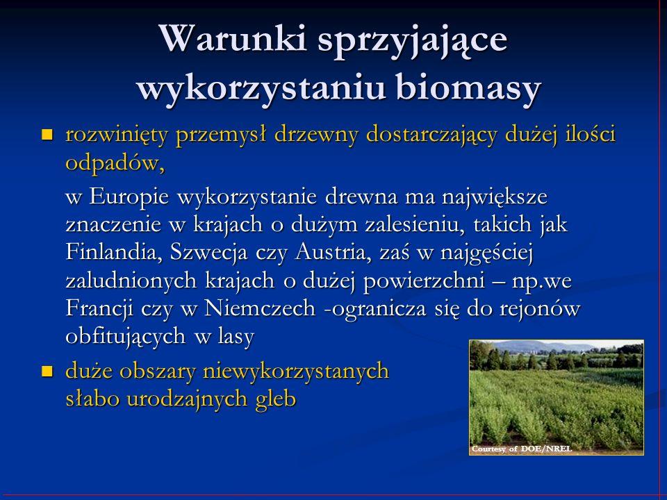 Warunki sprzyjające wykorzystaniu biomasy rozwinięty przemysł drzewny dostarczający dużej ilości odpadów, rozwinięty przemysł drzewny dostarczający du