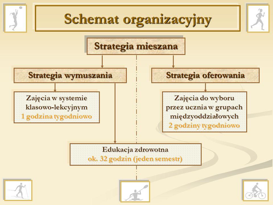 Schemat organizacyjny Strategia mieszana Strategia wymuszania Strategia oferowania Zajęcia w systemie klasowo-lekcyjnym 1 godzina tygodniowo Zajęcia d