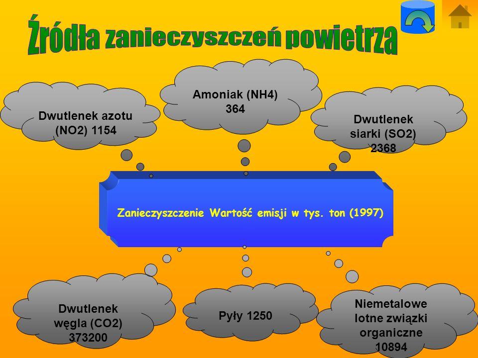 Toksyczne składniki spalin : -Tlenek węgla (CO) -Węglowodory (HC) -Tlenki azotu (NOx) -Tlen (O2) -Azot (N2) -Para wodna (H2O).