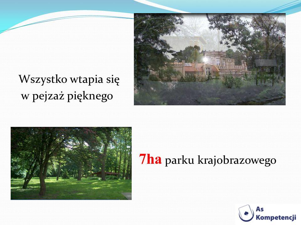 Wszystko wtapia się w pejzaż pięknego 7ha parku krajobrazowego