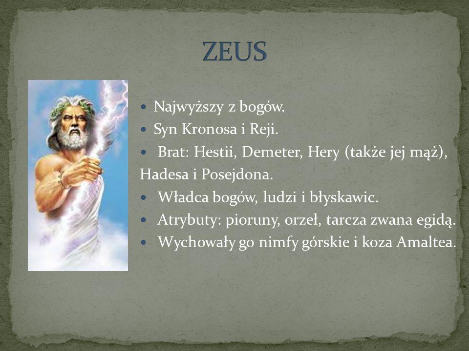 Najwyższy z bogów. Syn Kronosa i Reji. Brat: Hestii, Demeter, Hery (także jej mąż), Hadesa i Posejdona. Władca bogów, ludzi i błyskawic. Atrybuty: pio