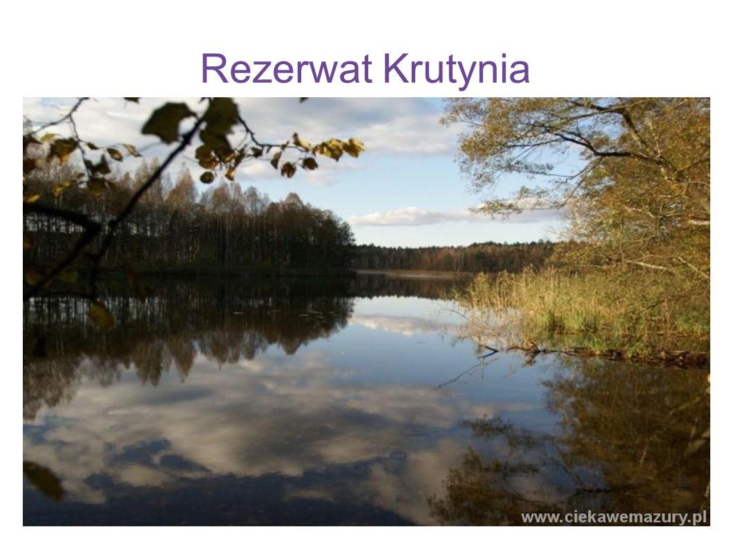 Rezerwat Krutynia