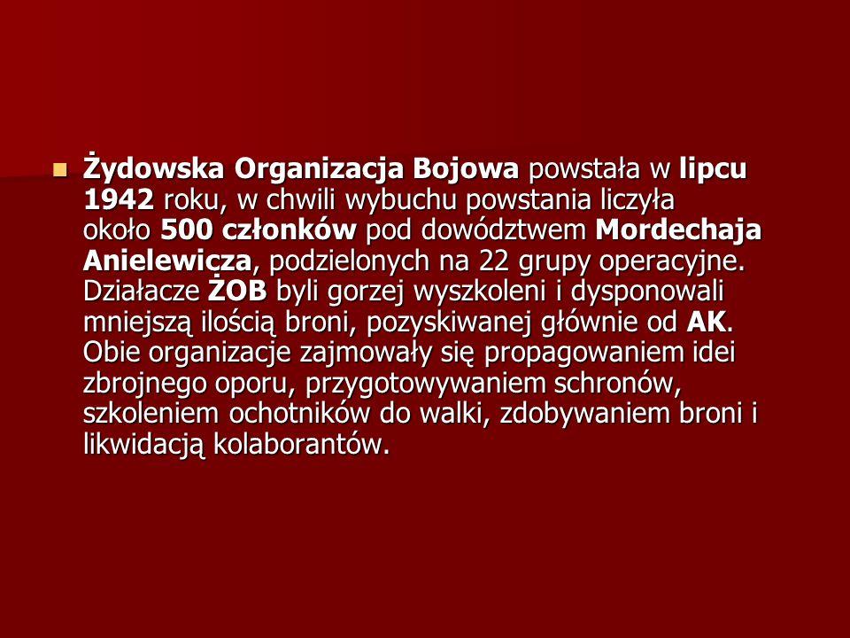 Żydowska Organizacja Bojowa powstała w lipcu 1942 roku, w chwili wybuchu powstania liczyła około 500 członków pod dowództwem Mordechaja Anielewicza, podzielonych na 22 grupy operacyjne.