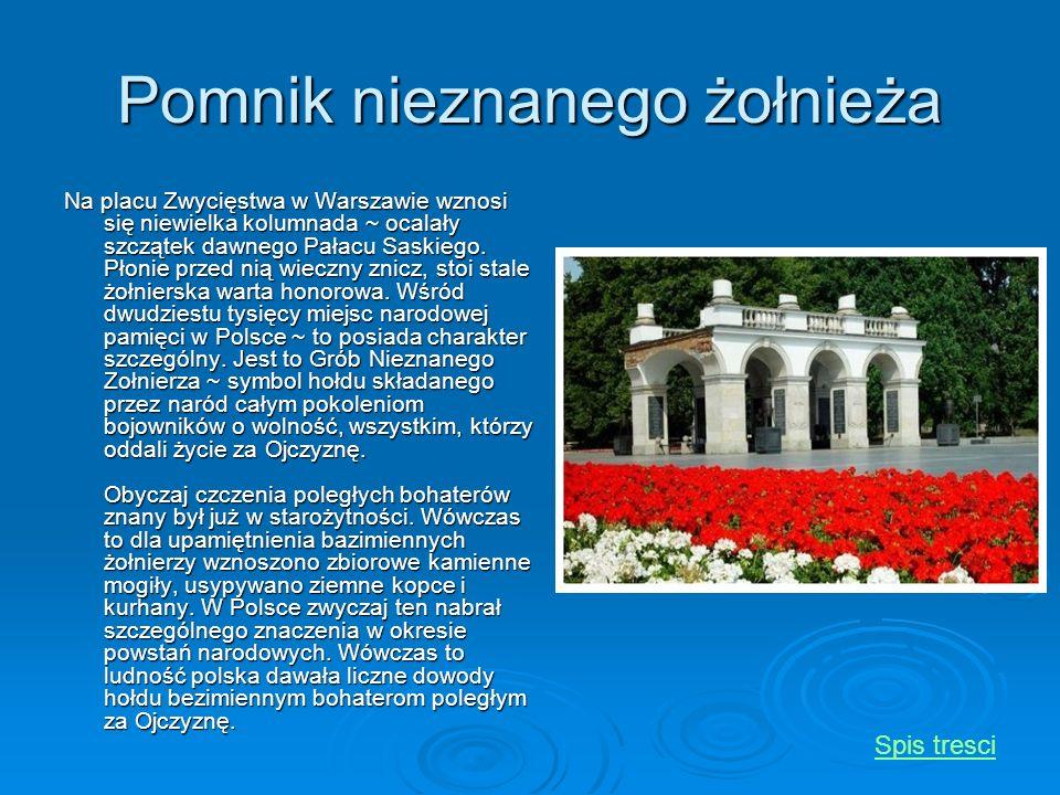 Pomnik nieznanego żołnieża Na placu Zwycięstwa w Warszawie wznosi się niewielka kolumnada ~ ocalały szczątek dawnego Pałacu Saskiego. Płonie przed nią