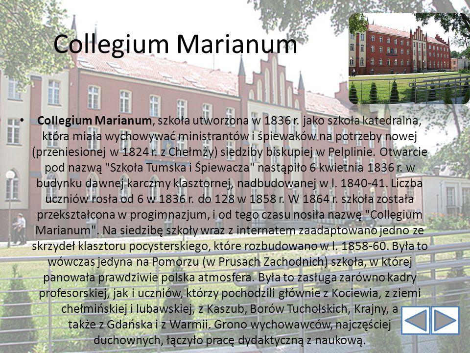 Collegium Marianum Collegium Marianum, szkoła utworzona w 1836 r. jako szkoła katedralna, która miała wychowywać ministrantów i śpiewaków na potrzeby