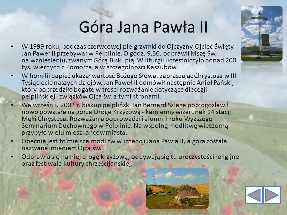 Góra Jana Pawła II W 1999 roku, podczas czerwcowej pielgrzymki do Ojczyzny, Ojciec Święty Jan Paweł II przebywał w Pelplinie. O godz. 9.30. odprawił M