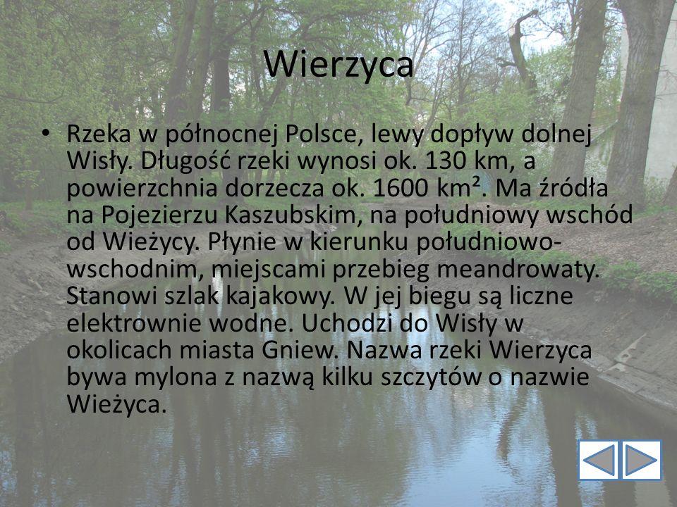 Wierzyca Rzeka w północnej Polsce, lewy dopływ dolnej Wisły. Długość rzeki wynosi ok. 130 km, a powierzchnia dorzecza ok. 1600 km². Ma źródła na Pojez