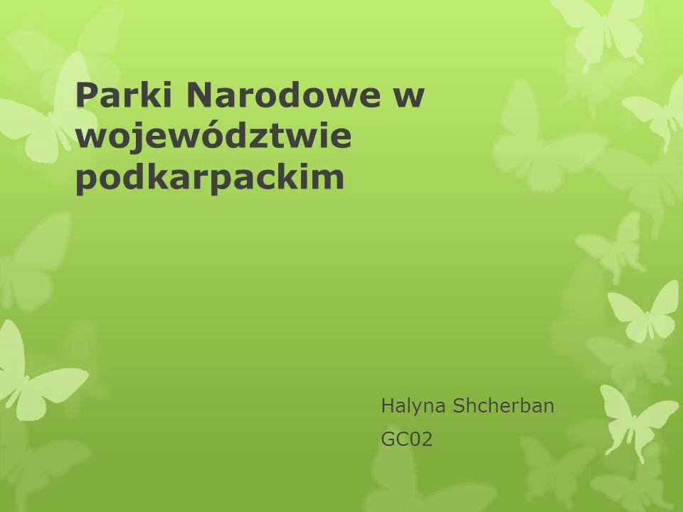 Parki Narodowe w województwie podkarpackim Halyna Shcherban GC02