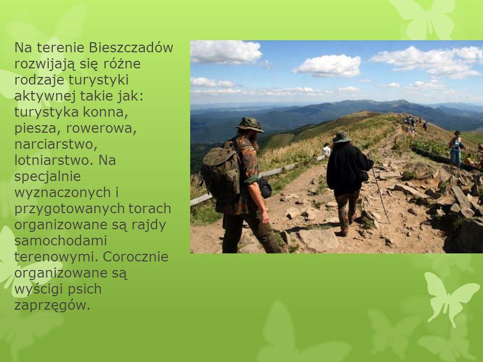Na terenie Bieszczadów rozwijają się różne rodzaje turystyki aktywnej takie jak: turystyka konna, piesza, rowerowa, narciarstwo, lotniarstwo. Na specj