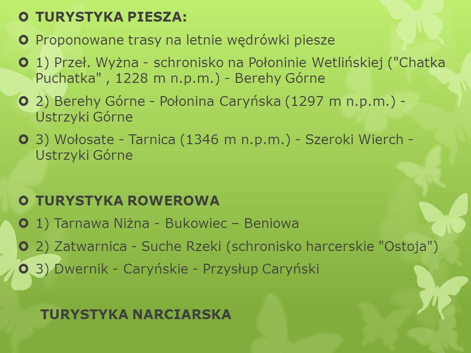 TURYSTYKA PIESZA: Proponowane trasy na letnie wędrówki piesze 1) Przeł. Wyżna - schronisko na Połoninie Wetlińskiej (