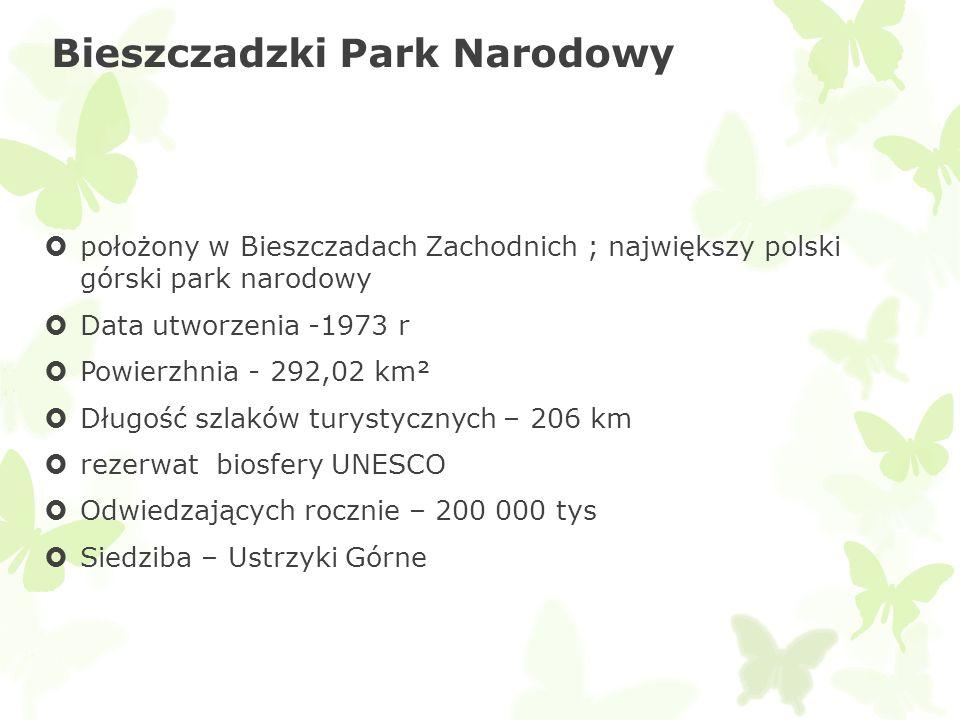 Bieszczadzki Park Narodowy położony w Bieszczadach Zachodnich ; największy polski górski park narodowy Data utworzenia -1973 r Powierzhnia - 292,02 km
