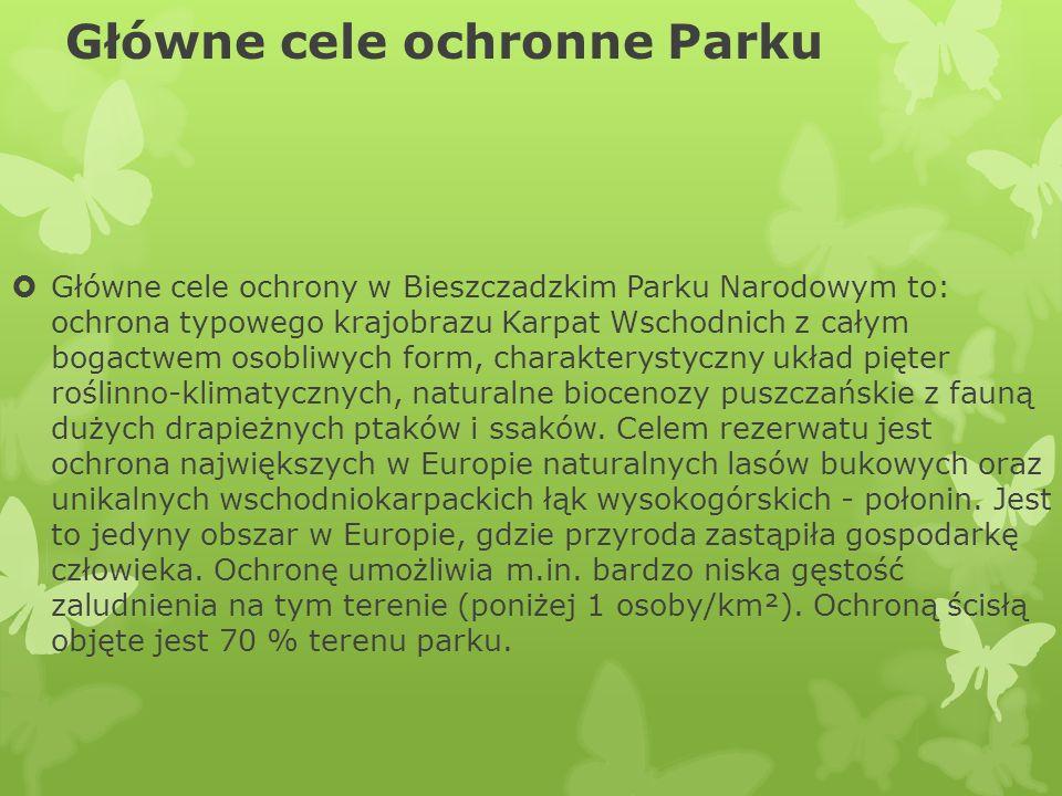 Główne cele ochronne Parku Główne cele ochrony w Bieszczadzkim Parku Narodowym to: ochrona typowego krajobrazu Karpat Wschodnich z całym bogactwem oso