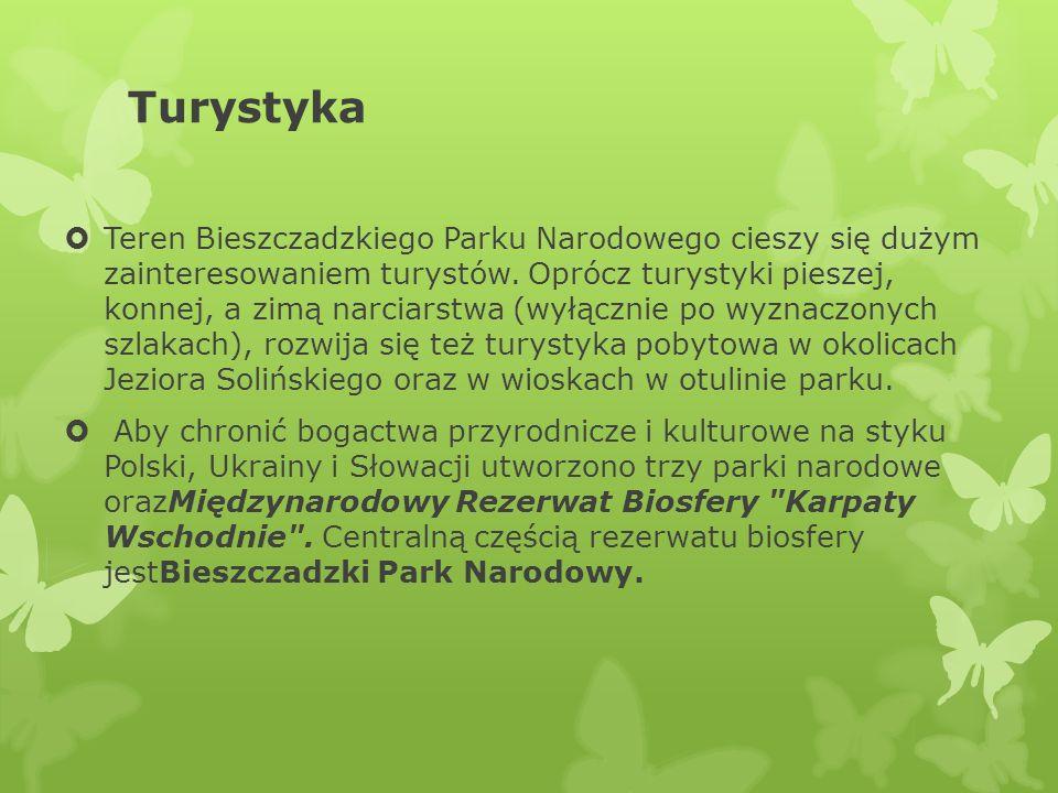 Turystyka Teren Bieszczadzkiego Parku Narodowego cieszy się dużym zainteresowaniem turystów. Oprócz turystyki pieszej, konnej, a zimą narciarstwa (wył