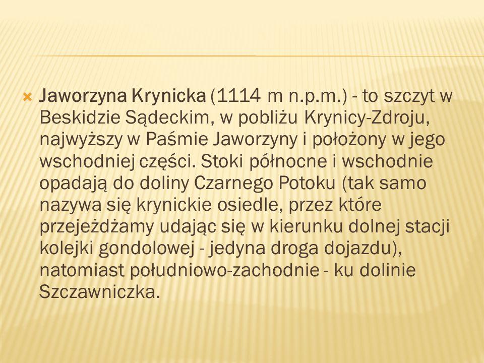 Jaworzyna Krynicka (1114 m n.p.m.) - to szczyt w Beskidzie Sądeckim, w pobliżu Krynicy-Zdroju, najwyższy w Paśmie Jaworzyny i położony w jego wschodni
