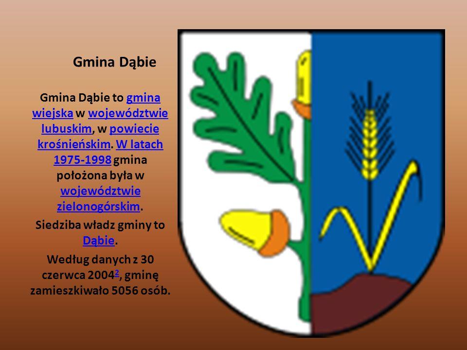 Gmina Dąbie Gmina Dąbie to gmina wiejska w województwie lubuskim, w powiecie krośnieńskim. W latach 1975-1998 gmina położona była w województwie zielo