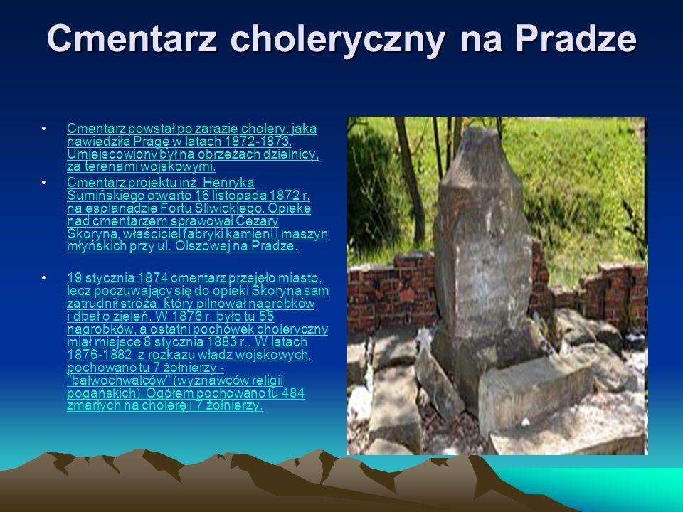 Cmentarz powstał po zarazie cholery, jaka nawiedziła Pragę w latach 1872-1873. Umiejscowiony był na obrzeżach dzielnicy, za terenami wojskowymi.choler