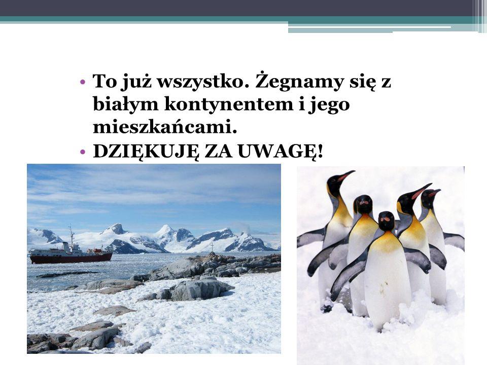 MIESZKAŃCY ANTARKTYDY W lekturze, pingwiny uciekały przed lampartem morskim, drapieżnym ssakiem z rodziny fokowatych. Może on mierzyć 3,5 metra i waży