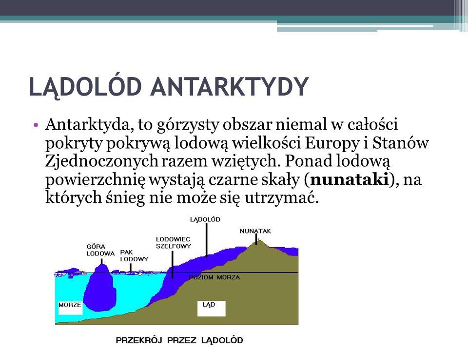 ANTARKTYDA Najwyższy szczyt Antarktydy to Masyw Vinsona (4897 m n.p.m.) Na kontynencie znajduje się też aktywny wulkan Erebus (3794 m n.p.m.)