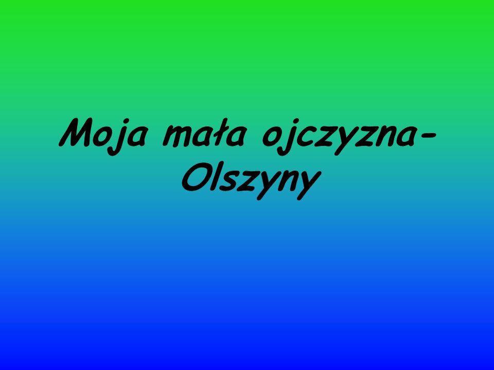 Położenie geograficzne Wieś Olszyny położona jest w województwie małopolskim, powiecie tarnowskim, w gminie Rzepiennik Strzyżewski.