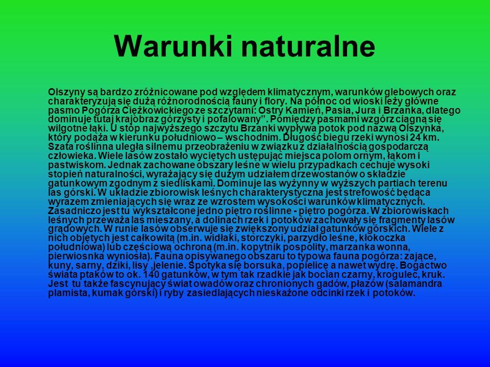 Warunki naturalne Olszyny są bardzo zróżnicowane pod względem klimatycznym, warunków glebowych oraz charakteryzują się dużą różnorodnością fauny i flo