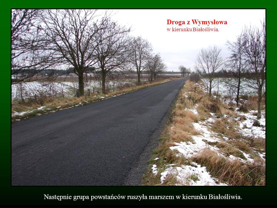 Następnie grupa powstańców ruszyła marszem w kierunku Białośliwia. Droga z Wymysłowa w kierunku Białośliwia.