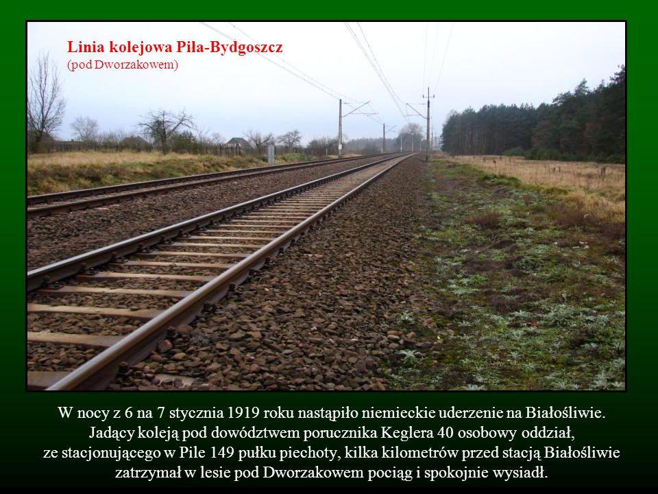 W nocy z 6 na 7 stycznia 1919 roku nastąpiło niemieckie uderzenie na Białośliwie. Jadący koleją pod dowództwem porucznika Keglera 40 osobowy oddział,