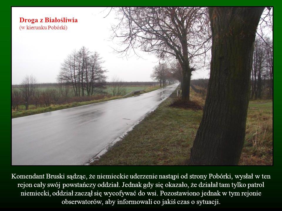 Komendant Bruski sądząc, że niemieckie uderzenie nastąpi od strony Pobórki, wysłał w ten rejon cały swój powstańczy oddział. Jednak gdy się okazało, ż