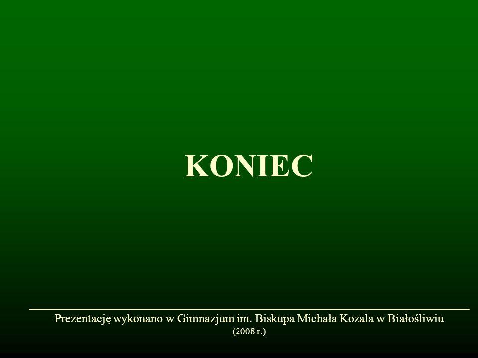 KONIEC ______________________________ Prezentację wykonano w Gimnazjum im. Biskupa Michała Kozala w Białośliwiu (2008 r.)