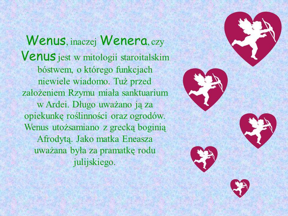 Wenus, inaczej Wenera, czy Venus jest w mitologii staroitalskim bóstwem, o którego funkcjach niewiele wiadomo. Tuż przed założeniem Rzymu miała sanktu