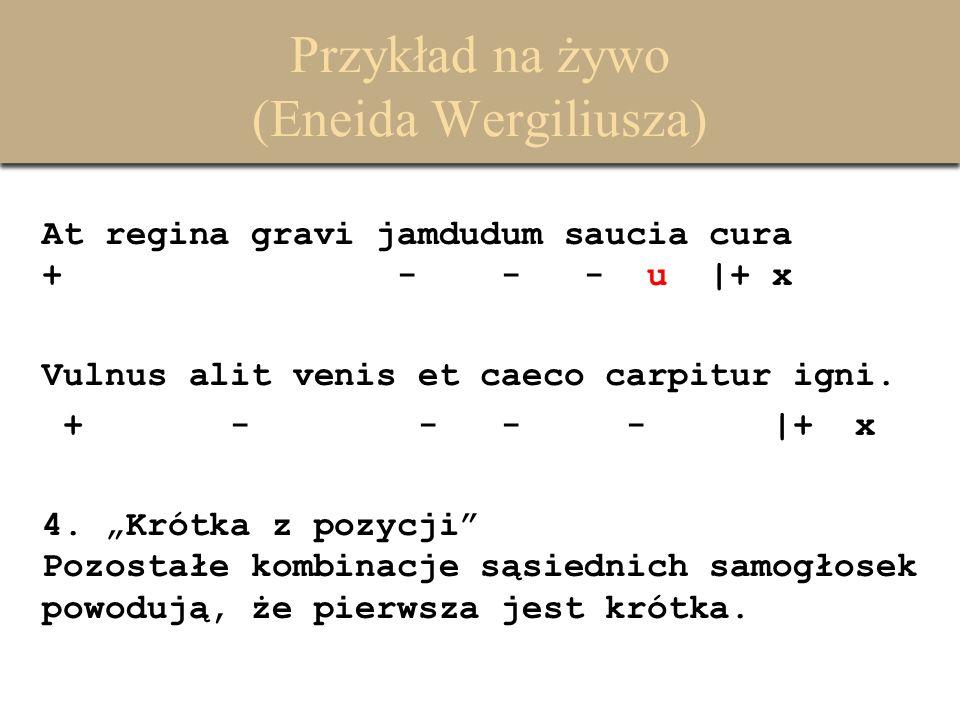 Przykład na żywo (Eneida Wergiliusza) At regina gravi jamdudum saucia cura + - - - u |+ x Vulnus alit venis et caeco carpitur igni. + - - - - |+ x 4.