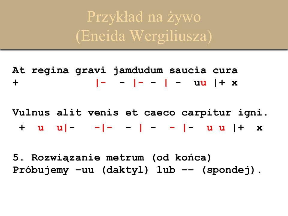 Przykład na żywo (Eneida Wergiliusza) At regina gravi jamdudum saucia cura + |- - |- - | - uu |+ x Vulnus alit venis et caeco carpitur igni. + u u|- -