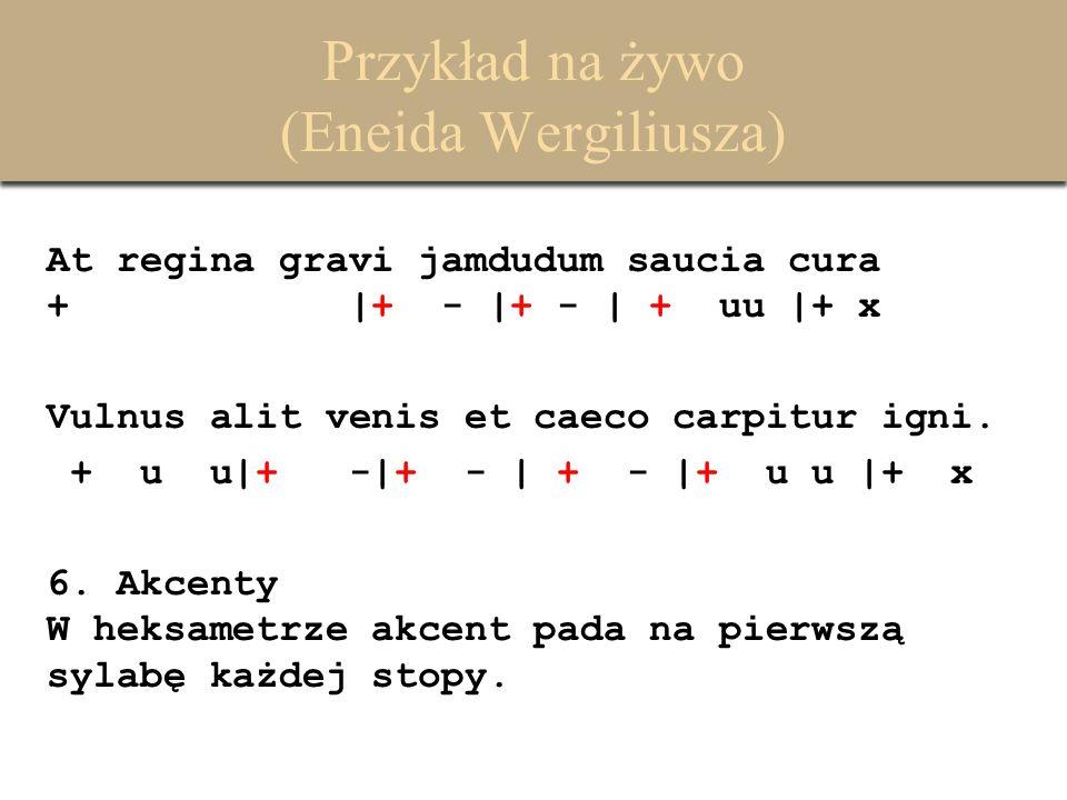 Przykład na żywo (Eneida Wergiliusza) At regina gravi jamdudum saucia cura + |+ - |+ - | + uu |+ x Vulnus alit venis et caeco carpitur igni. + u u|+ -