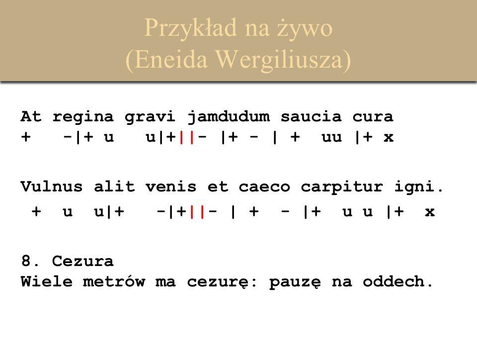 Przykład na żywo (Eneida Wergiliusza) At regina gravi jamdudum saucia cura + -|+ u u|+||- |+ - | + uu |+ x Vulnus alit venis et caeco carpitur igni. +