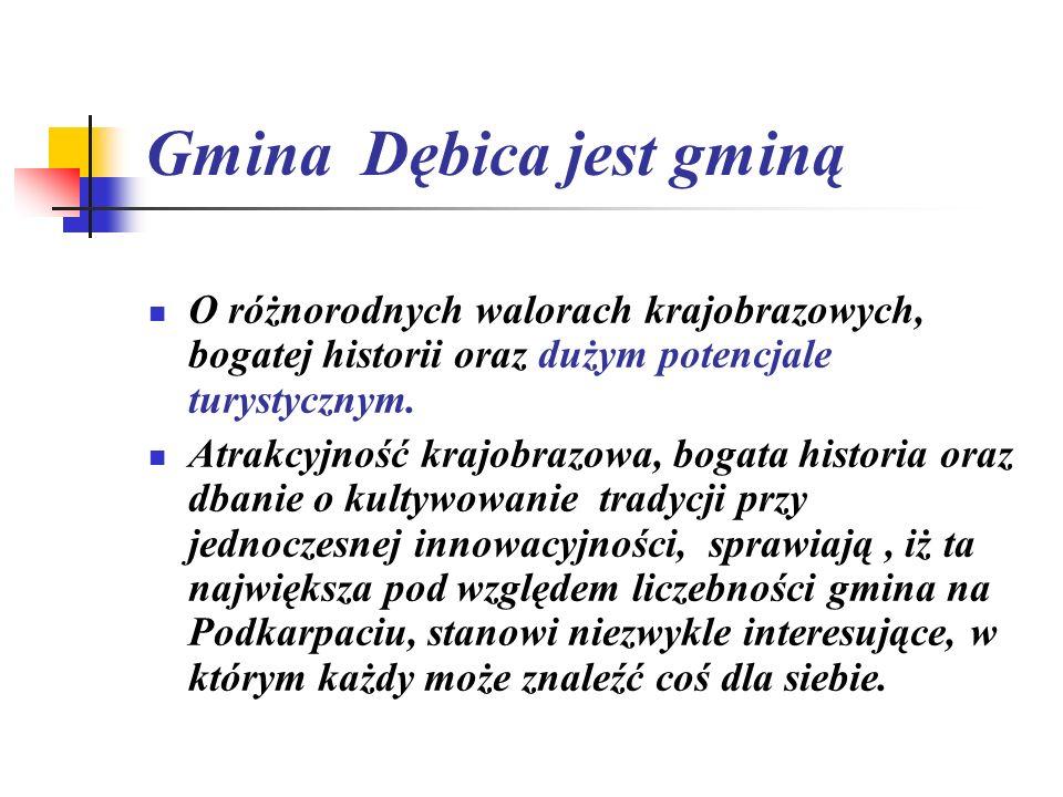 Gmina Dębica jest gminą O różnorodnych walorach krajobrazowych, bogatej historii oraz dużym potencjale turystycznym. Atrakcyjność krajobrazowa, bogata