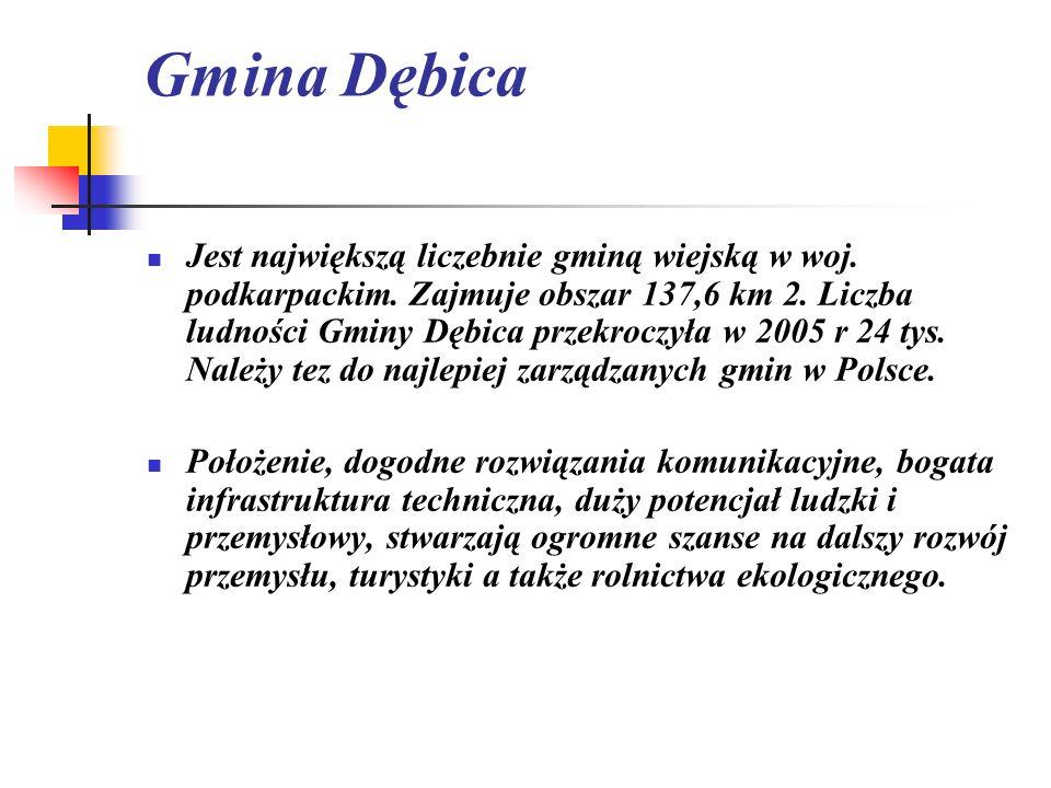 Gmina Dębica Jest największą liczebnie gminą wiejską w woj. podkarpackim. Zajmuje obszar 137,6 km 2. Liczba ludności Gminy Dębica przekroczyła w 2005