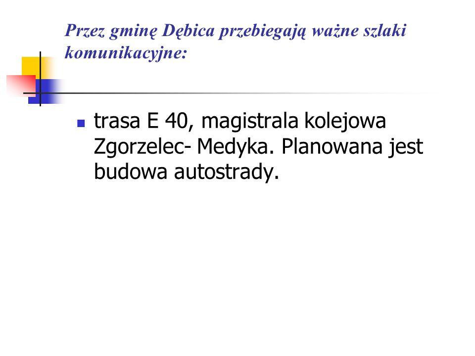 Przez gminę Dębica przebiegają ważne szlaki komunikacyjne: trasa E 40, magistrala kolejowa Zgorzelec- Medyka. Planowana jest budowa autostrady.