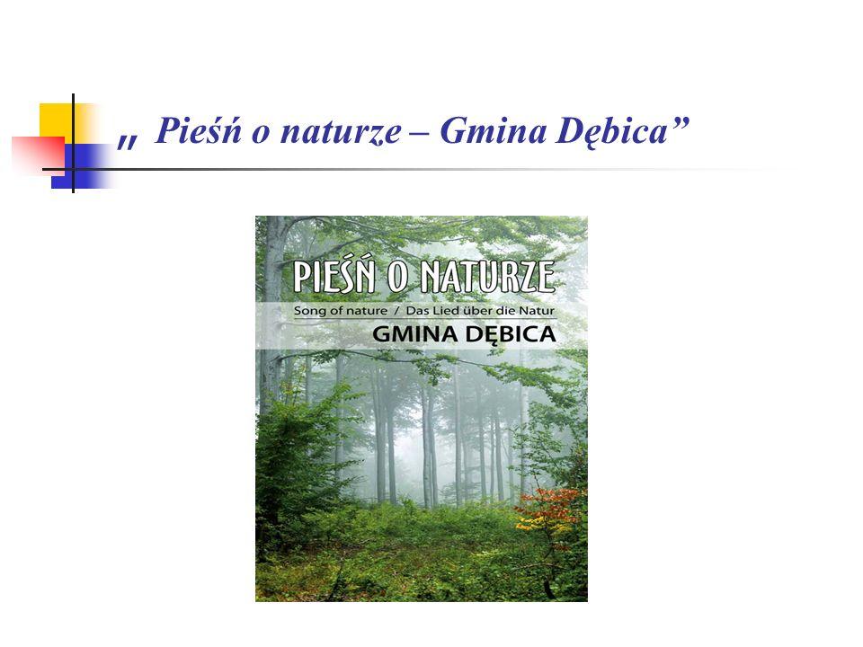 To tytuł albumu o obszarze położonym w granicach administracyjnych Gminy Dębica, który w całości zilustrowany jest fotografiami Dariusza Tyrpina.